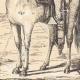 DÉTAILS 05 | Comanche - Amérindien - Costume (États-Unis d'Amérique)