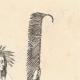DÉTAILS 04   Chippewa - Amérindien - Costume (États-Unis d'Amérique)