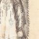 DÉTAILS 05 | Chef Mandan - Amérindien - Costume (États-Unis d'Amérique)