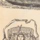 DÉTAILS 02 | Amérindiens - Indiens d'Amérique - Canots et Berceaux (États-Unis d'Amérique)