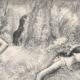 DÉTAILS 02 | Ballet - Danseuses - Danseuses Roses (Edgas Degas)