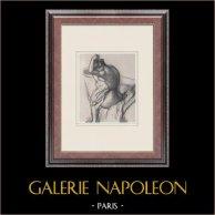 Female Nude - Après le Bain (Edgar Degas)