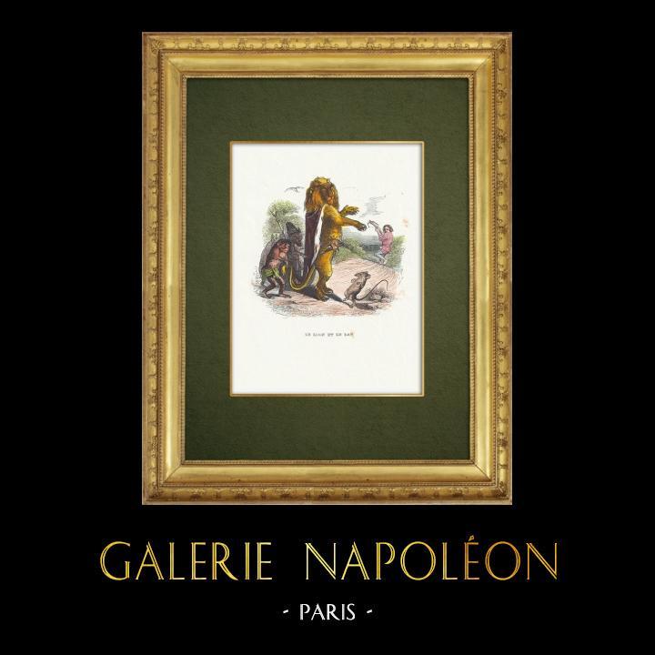 Gravures Anciennes & Dessins | Fables de La Fontaine - Le Lion et le Rat | Gravure sur bois | 1859