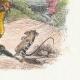 DÉTAILS 04 | Fables de La Fontaine - Le Lion et le Rat
