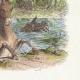 DÉTAILS 04 | Fables de La Fontaine - L'Ane Chargé d'éponge et l'ane chargé de Sel