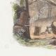 DÉTAILS 02   Fables de La Fontaine - La Mort et le Bucheron