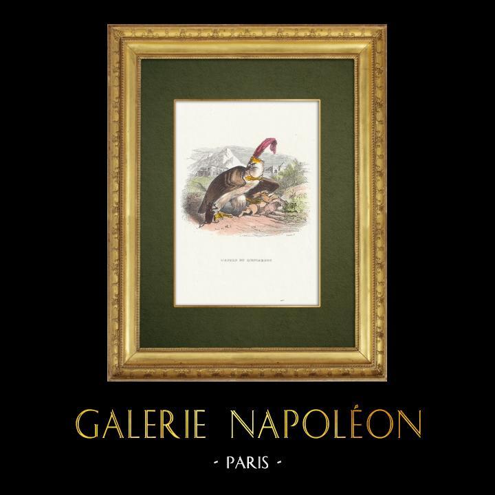 Gravures Anciennes & Dessins   Fables de La Fontaine - L'Aigle et l'Escargot   Gravure sur bois   1859