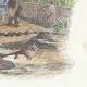 DÉTAILS 04   Fables de La Fontaine - L'Oiseau Blessé d'une Flèche