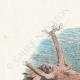 DÉTAILS 01 | Fables de La Fontaine - Le  Chène et le Roseau