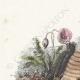 DÉTAILS 01   Fables de La Fontaine - Les Frelons et les Mouches à Miel
