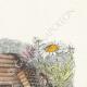 DÉTAILS 03   Fables de La Fontaine - Les Frelons et les Mouches à Miel