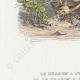 DÉTAILS 02 | Fables de La Fontaine - Le Dragon à Plusieurs Têtes et le Dragon à Plusieurs Queues
