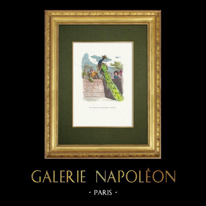 Gravures Anciennes & Dessins | Fables de La Fontaine - Le Paon se Plaignant à Junon | Gravure sur bois | 1859