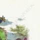 DÉTAILS 03 | Fables de La Fontaine - Le Paon se Plaignant à Junon