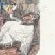 DÉTAILS 04   Fables de La Fontaine - Le Cygne et le Cuisinier