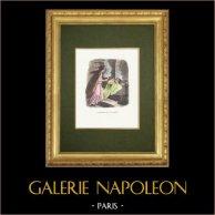 Fables of La Fontaine - L'Ivrogne et sa Femme