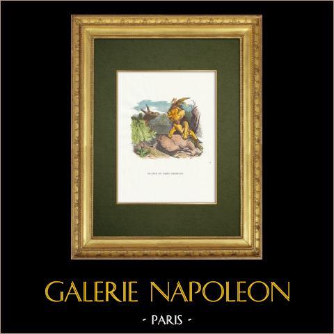 Favole di La Fontaine - Le Lion et l'Ane Chassant | Incisione xilografica originale disegnata da J.J. Grandville. Acquerellata a mano. 1859