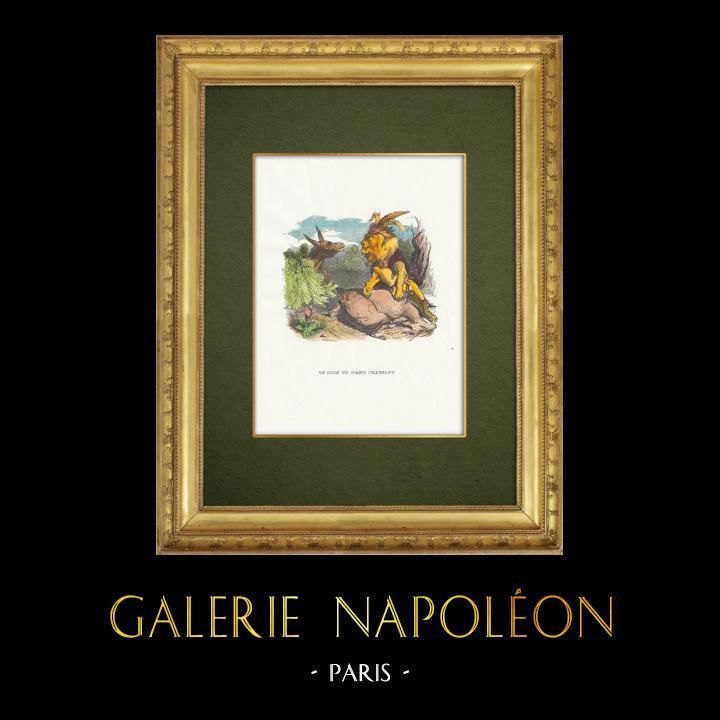 Gravures Anciennes & Dessins | Fables de La Fontaine - Le Lion et l'Ane Chassant | Gravure sur bois | 1859