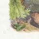 DÉTAILS 02 | Fables de La Fontaine - Le Lion et l'Ane Chassant