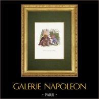 Fables of La Fontaine - L'Aigle, la Laie et la Chatte
