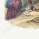 DÉTAILS 02   Fables de La Fontaine - La Mouche et la Fourmi