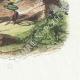 DÉTAILS 04   Fables de La Fontaine - La Mouche et la Fourmi