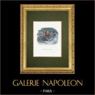 La Fontaines Fabeln - Le Singe et le Dauphin
