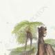 DÉTAILS 01 | Fables de La Fontaine - Le Chameau et les Batons Flottants