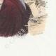 DÉTAILS 04 | Fables de La Fontaine - Parole de Socrate