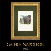Fables of La Fontaine - Jupiter et le Métayer