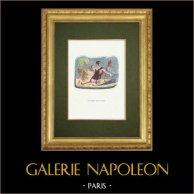Fables of La Fontaine - Le Patre et le Lion