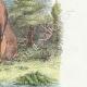 DÉTAILS 04 | Fables de La Fontaine - Le Cerf se Voyant dans l'Eau