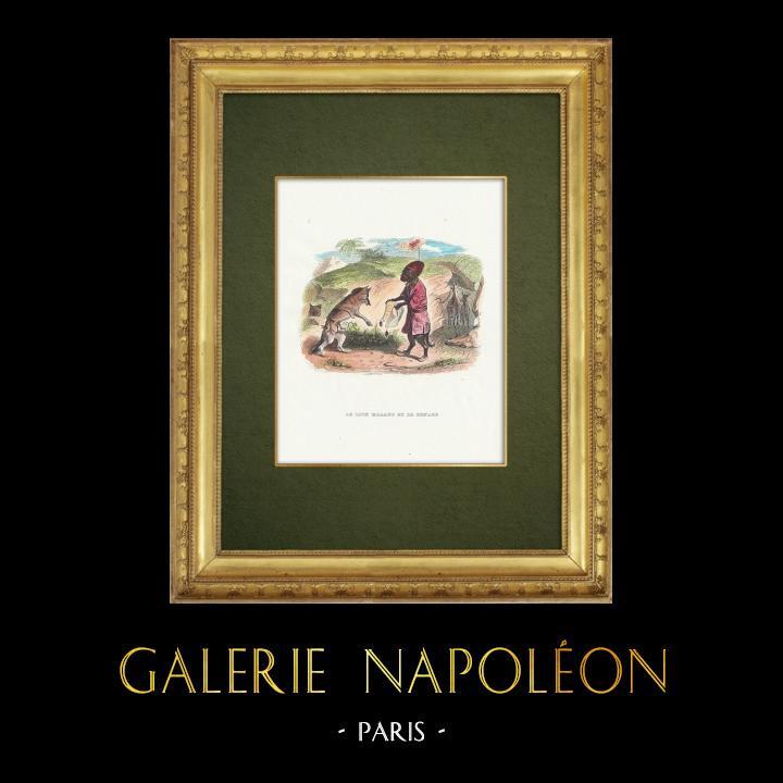 Gravures Anciennes & Dessins | Fables de La Fontaine - Le Lion Malade et le Renard | Gravure sur bois | 1859