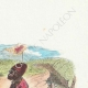 DÉTAILS 03 | Fables de La Fontaine - Le Lion Malade et le Renard