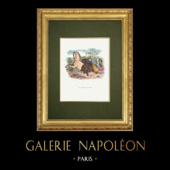 Gravures Anciennes & Dessins   Fables de La Fontaine - Le Cheval et l'Ane   Gravure sur bois   1859