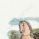DÉTAILS 01   Fables de La Fontaine - Le Cheval et l'Ane