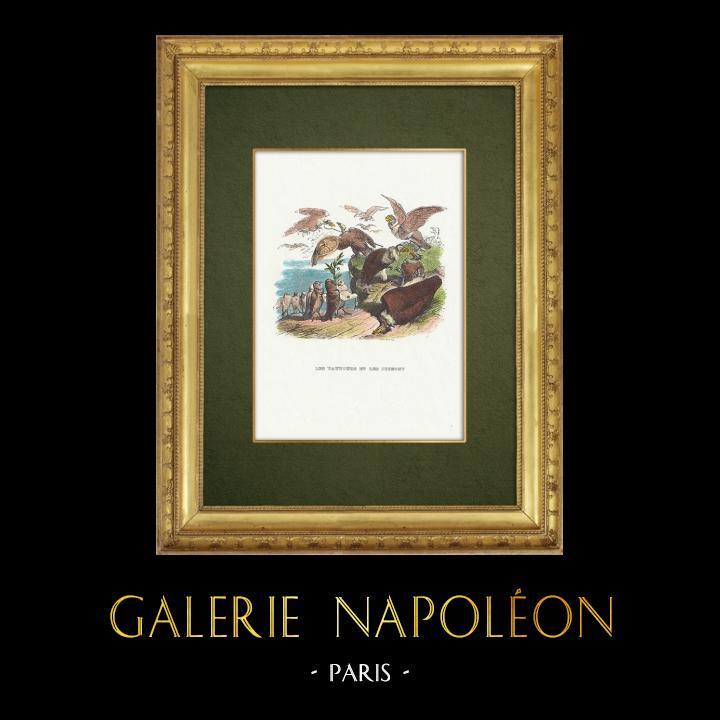 Gravures Anciennes & Dessins   Fables de La Fontaine - Les Vautours et les Pigeons   Gravure sur bois   1859
