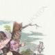 DÉTAILS 03 | Fables de La Fontaine - Tircis et Amarante