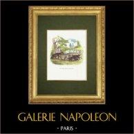 Fables of La Fontaine - Le Bassa et le Marchand