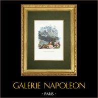 Fables of La Fontaine - Jupiter et les Tonnerres