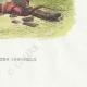 DÉTAILS 06   Fables de La Fontaine - Le Dépositaire Infidèle