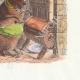 DÉTAILS 04 | Fables de La Fontaine - L'Education