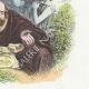 DÉTAILS 04 | Fables de La Fontaine - Démocrite et les Abderitains