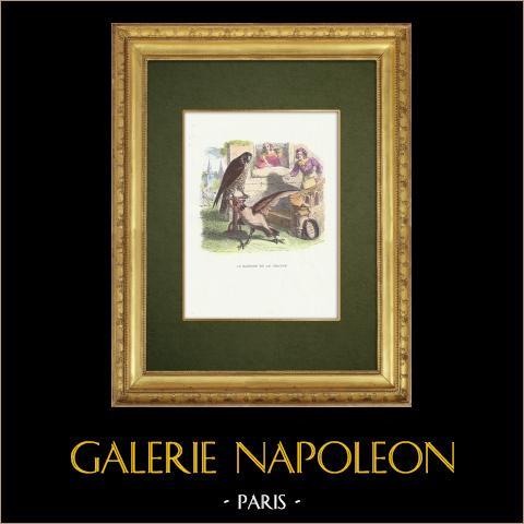 Favole di La Fontaine - Le Faucon et le Chapon | Incisione xilografica originale disegnata da J.J. Grandville. Acquerellata a mano. 1859