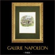 Fables of La Fontaine - Rien de Trop