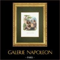 Fables of La Fontaine - L'Homme et la Couleuvre