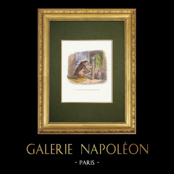 Gravures Anciennes & Dessins | Fables de La Fontaine - Le Vieux Chat et la Jeune Souris | Gravure sur bois | 1859