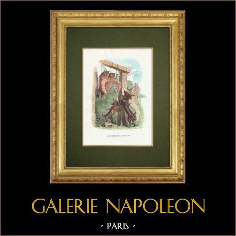 Favole di La Fontaine - Le Renard Anglais | Incisione xilografica originale disegnata da J.J. Grandville. Acquerellata a mano. 1859