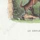 DÉTAILS 05   Fables de La Fontaine - Le Renard Anglais