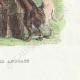 DÉTAILS 06   Fables de La Fontaine - Le Renard Anglais